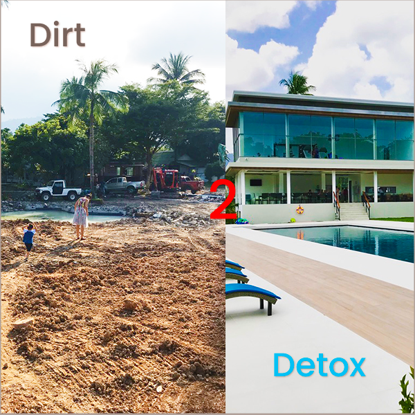 From Dirt to Detox