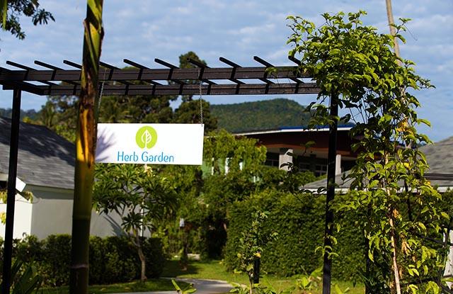 around-the-resort-11